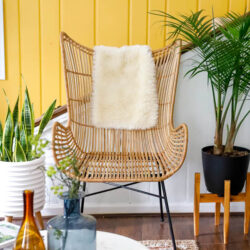 Creating an urban jungle in your home