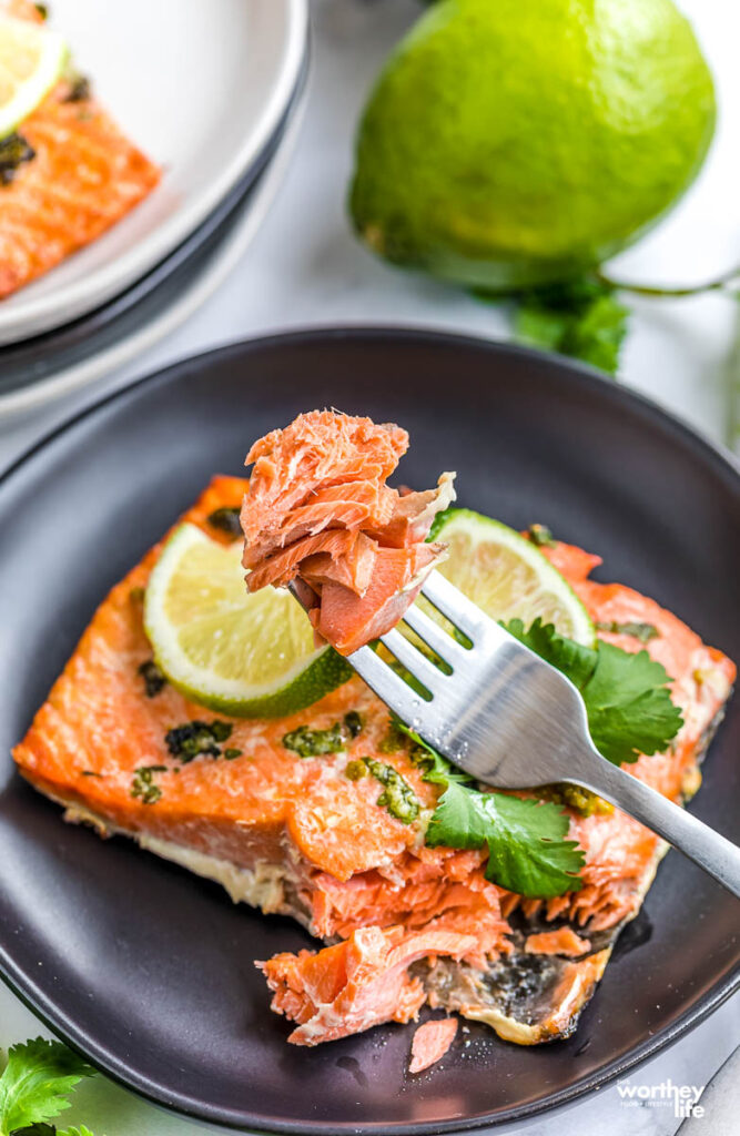 air fryer salmon recipe