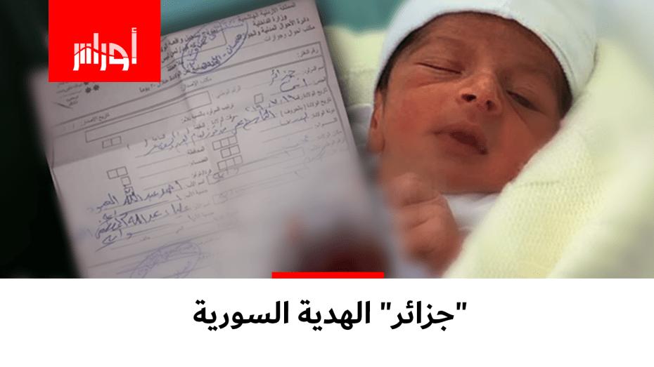 الجزائر الهدية السورية