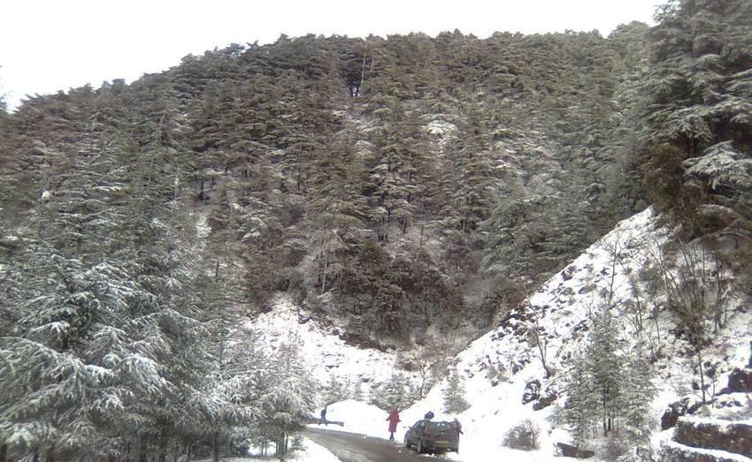 مصالح الأرصاد الجوية تتوقع تساقط الأمطار والثلوج