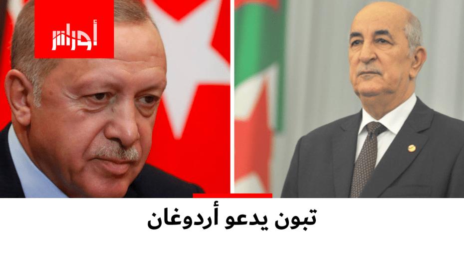 أردوغان يدعو تبون