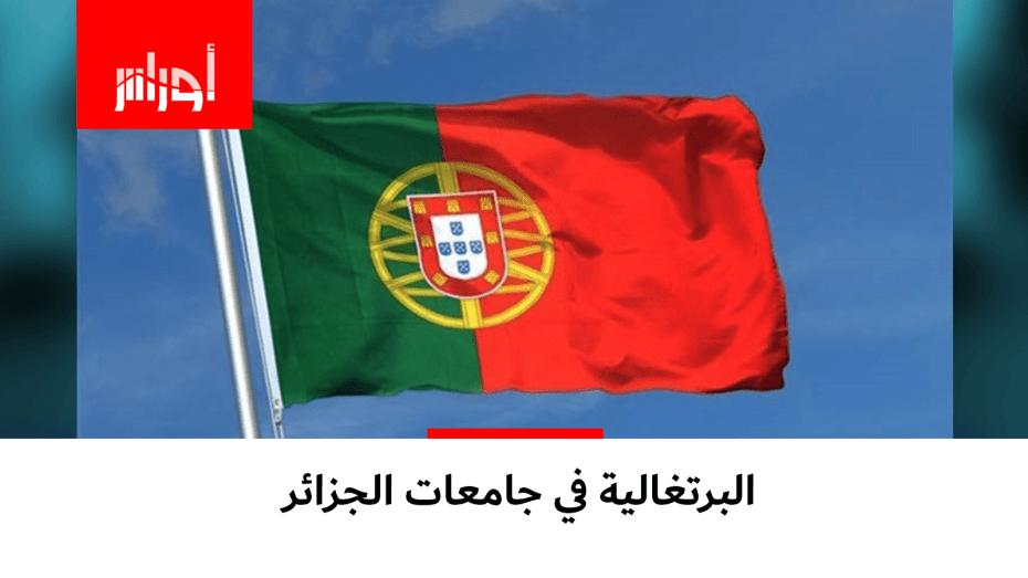 البرتغالية في الجامعات