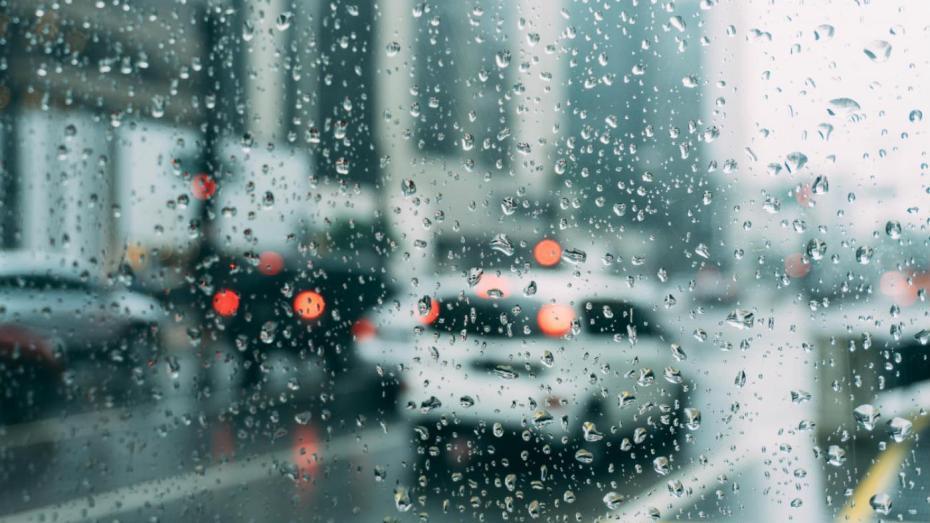 أمطار رعدية على الولايات الشرقية