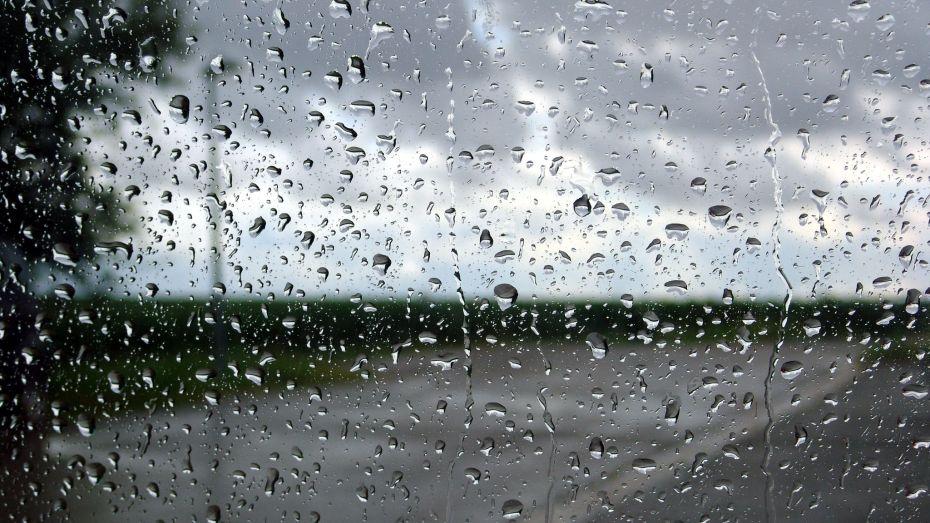 أحوال الطقس ليوم الجمعة.. أمطار بالمناطق الساحلية ودرجات حرارة مرتفعة في شرق البلاد