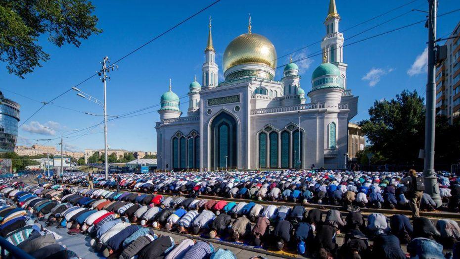 جهل ساسة أوروبا ينشر الإسلام