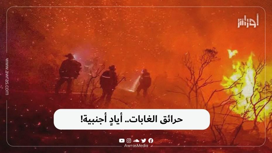 حرائق الغابات.. أيادٍ أجنبية!