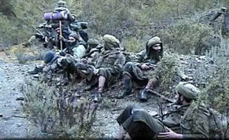 لجنة وطنية لمخاطر تمويل الإرهاب وأسلحة الدمار الشامل