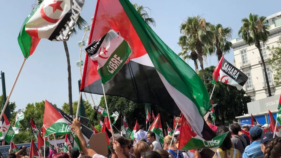 نواب بريطانيون يطالبون باعتراف بحق الصحراوين في تقرير مصيرهم