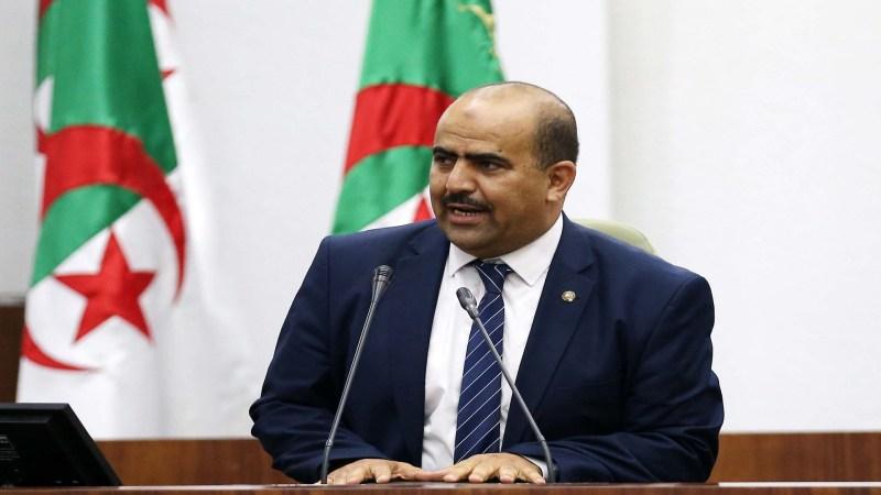 شنين في ذكرى يوم الشهيد: الجزائر مستهدفة وعلينا الحفاظ على وحدتها