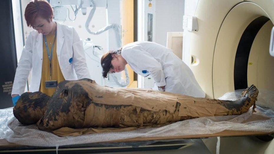 اكتشاف أول مومياء حامل في العالم