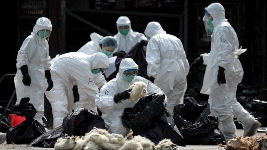 مرض شديد العدوى ينتشر في الصين