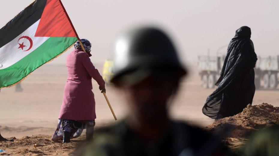 خبيرة أممية تدعو المغرب إلى التوقف عن استهداف النشطاء الصحراويين