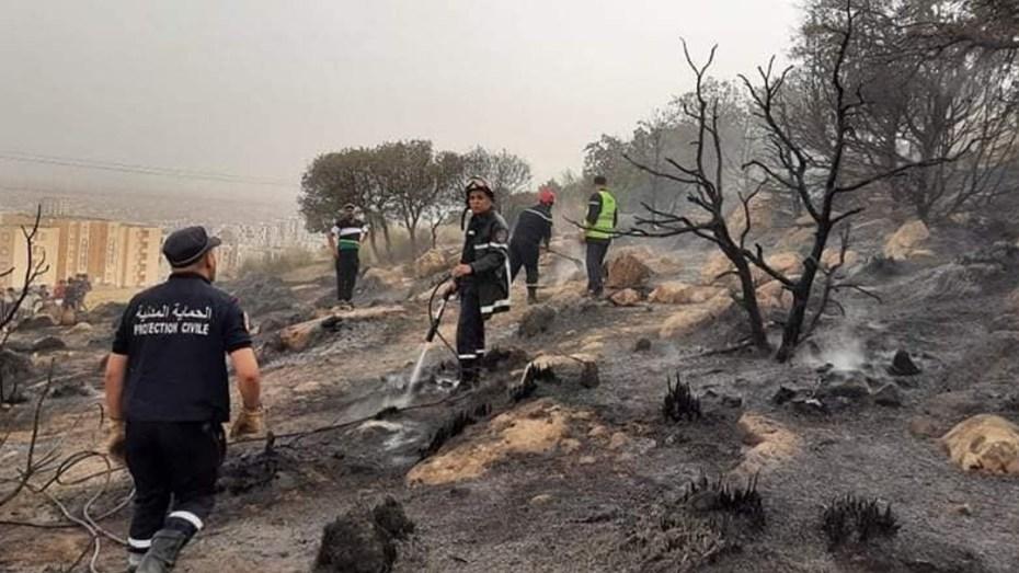بالصور.. نشوب حريق بغابة في تيارت والحماية المدنية تكشف الخسائر