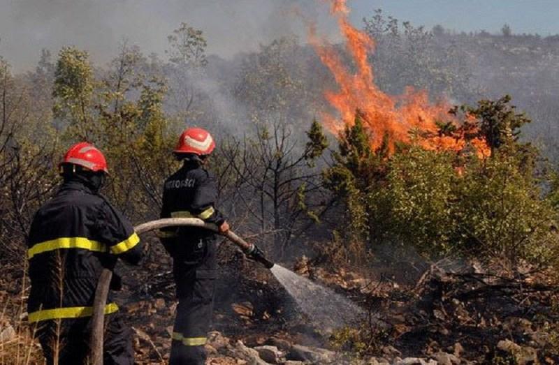 نشوب 6 حرائق غابات في 5 ولايات