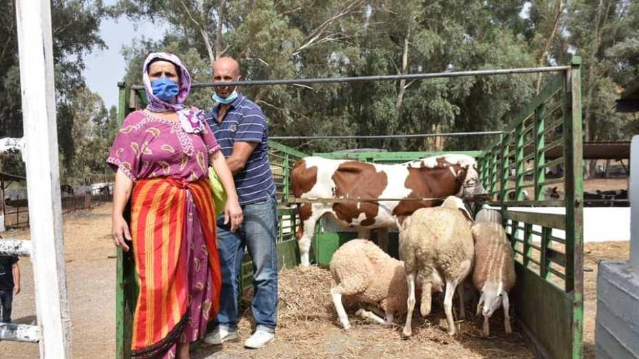 تسليم 6100 رأس من الماشية للمربين ضحايا حرائق تيزي وزو