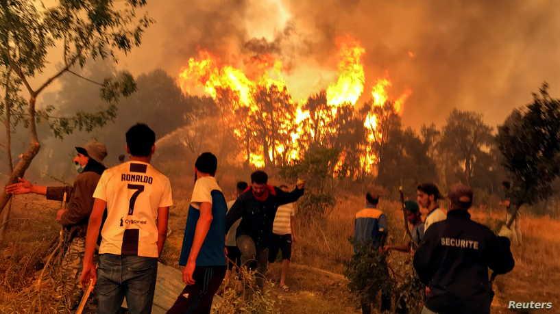 إيداع موقوفين في قضية حرائق الغابات الحبس المؤقت.. وكشف حقائق جديدة