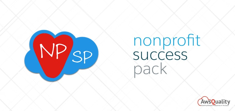 An Introduction to Nonprofit Success Pack