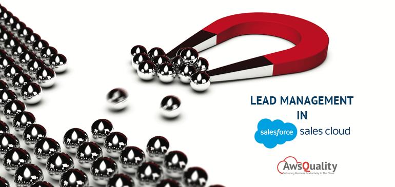 Lead Management in Salesforce Sales Cloud