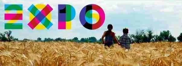 Expo 2015 tutto pronto per accogliere i visitatori sul territorio, ma online?