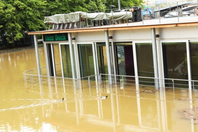 RadkaZKing_Jazzdock_flooded_2013
