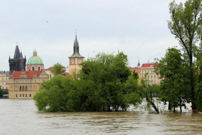 RadkaZimovaK_SlovanskyOstrov_Flooded_Island