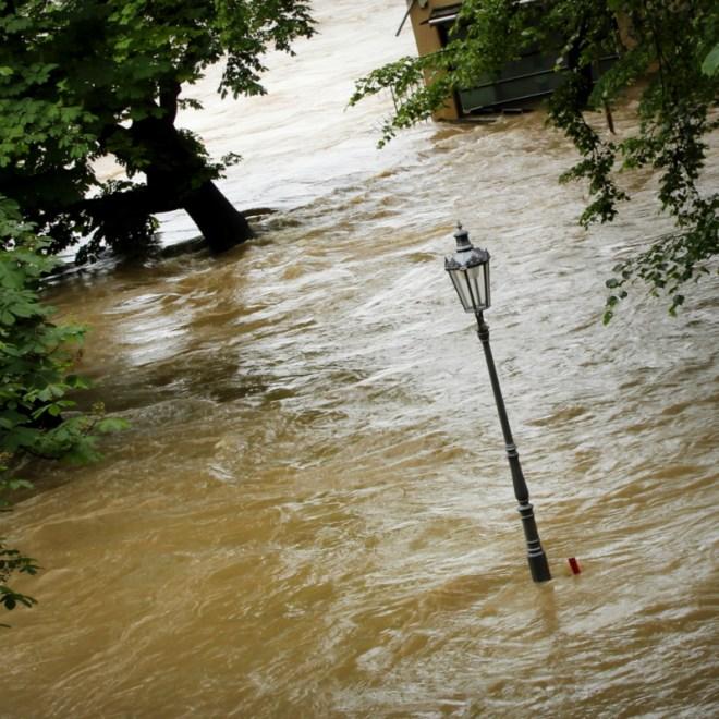 RadkaZimovaK_SlovanskyOstrov_Island_flooded