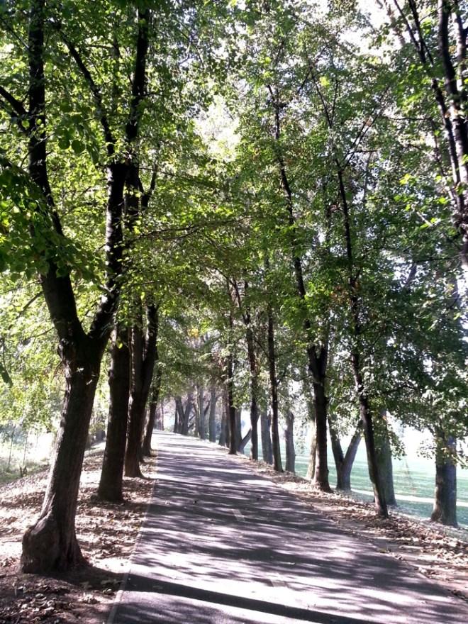 RadkaZKing_Alley_walk_near_Vltava