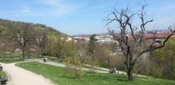 View_from_Sacre Coeur_park_Prague