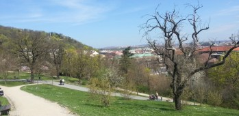 View_from_Sacre Coeur_park_Prague