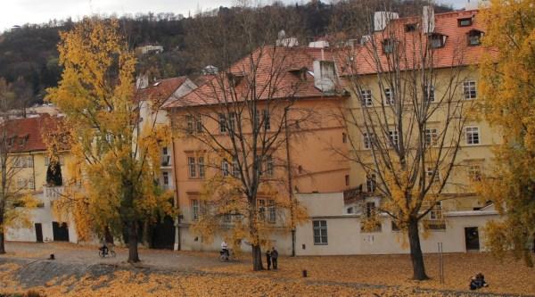 KampaParkRiverSide_ViewFromCharlesBridge_Prague_RadkaZKing