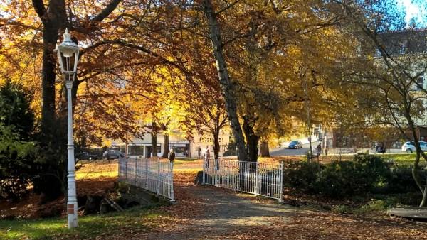 MarianskeLazne_Autumn2015_Park_RadkaZKing