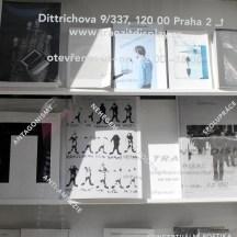 Bookshop_by_RadkaZimovaKing2016