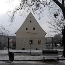 Winter-tree-against-beautiful-grey-sky