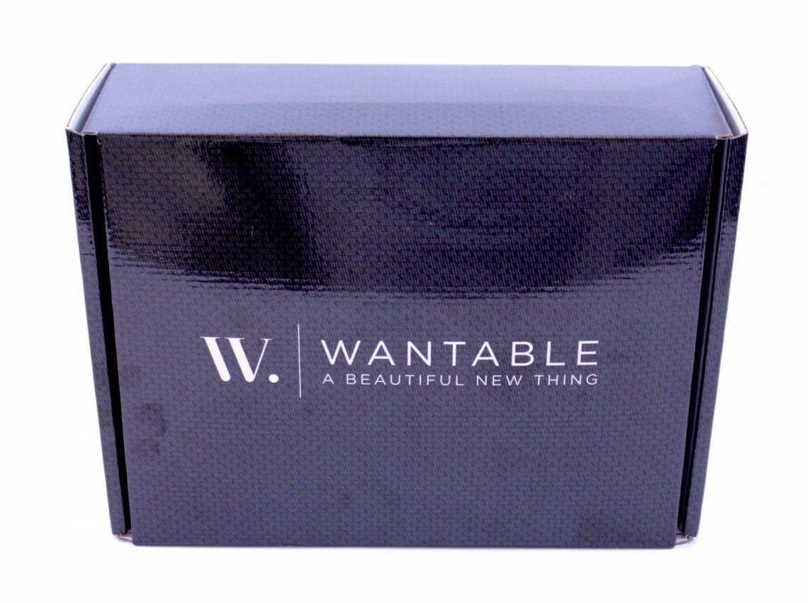 Wantable Intimates January 2016 5