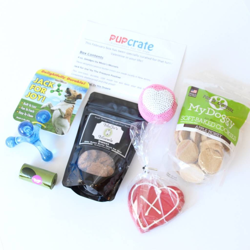 PupCrate February 2016 5