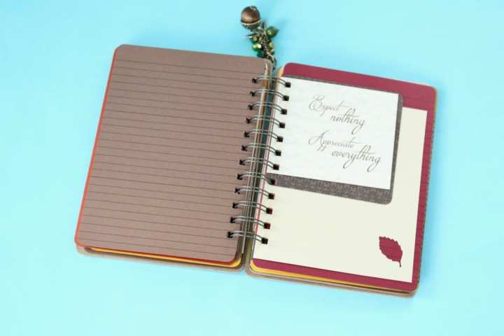 holly-journals-review-november-2016-8