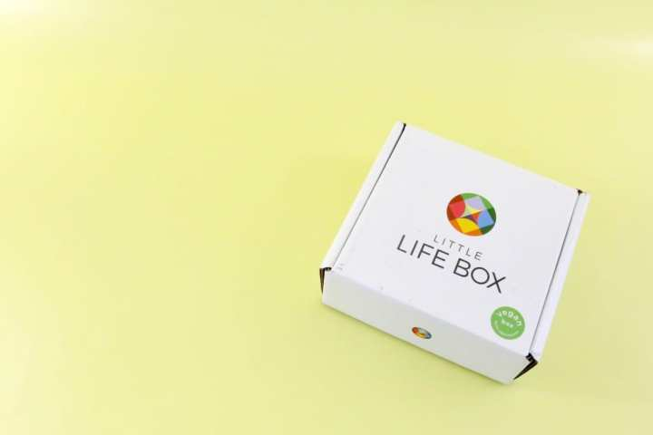 little-life-box-review-november-2016-1