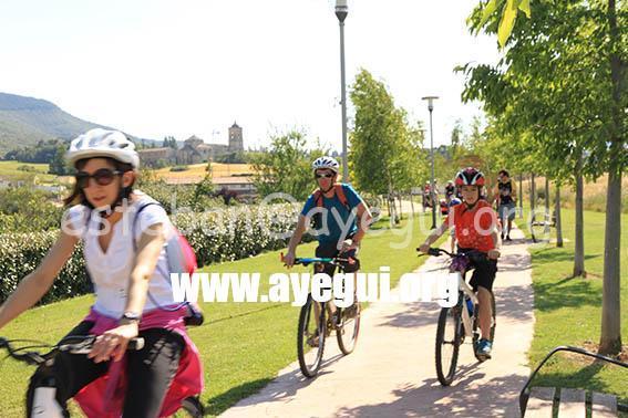 dia_bicicleta_2015-Galerias-Ayuntamiento-de-Ayegui (454)