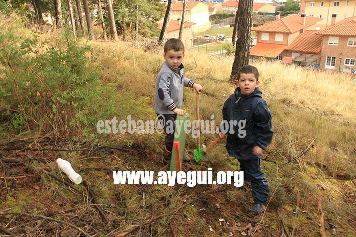 dia_del_arbol_2015-Galerias-Ayuntamiento-de-Ayegui (20)