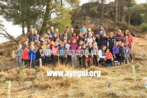 dia_del_arbol_2015-Galerias-Ayuntamiento-de-Ayegui (26)