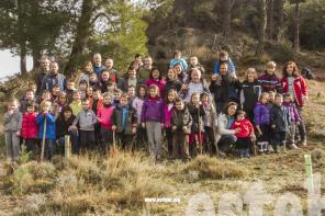 dia_del_arbol_2015-Galerias-Ayuntamiento-de-Ayegui (27)