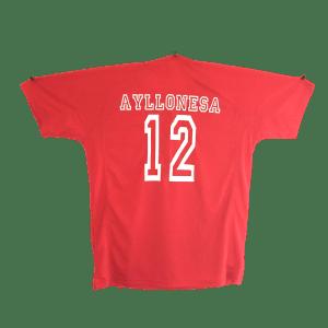 Camiseta Ayllonesa