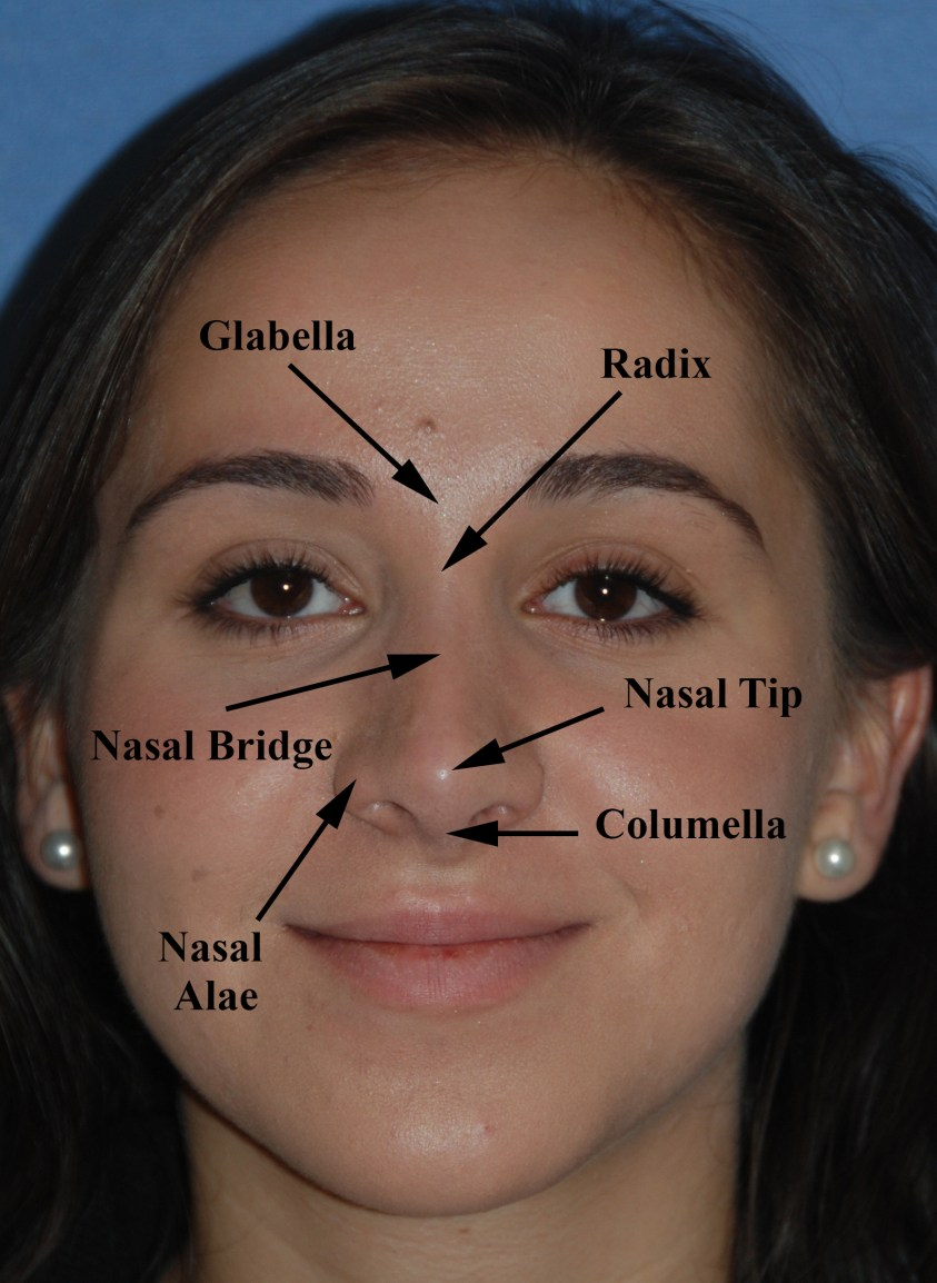 Rhinoplasty / Nose Surgery / Nose job / Nose Reshaping ...