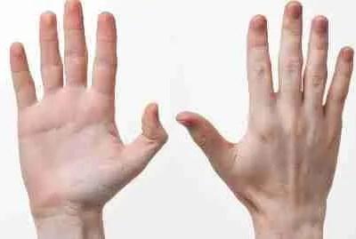 Habilidades perceptuales motoras, hábitos y automatismo