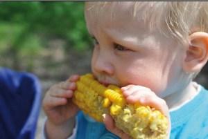 Curso de Trastornos de Alimentación en la Infancia en Terapia Ocupacional. 4ª edic. MATRÍCULA