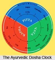 Types of Ayurvedic Doshas