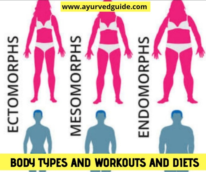 Body Types And Workouts