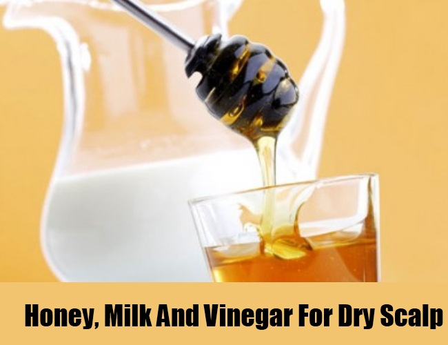 Honey, Milk And Vinegar For Dry Scalp
