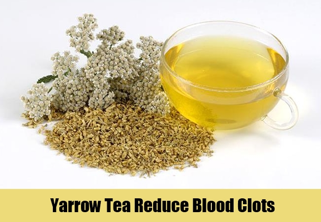 Yarrow Tea Reduce Blood Clots