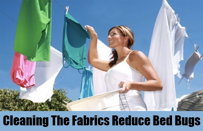 Cleaning The Fabrics Reduce Bed Bugs